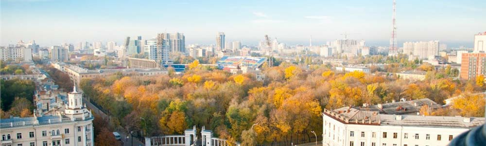 авиабилеты Санкт-Петербург Воронеж онлайн