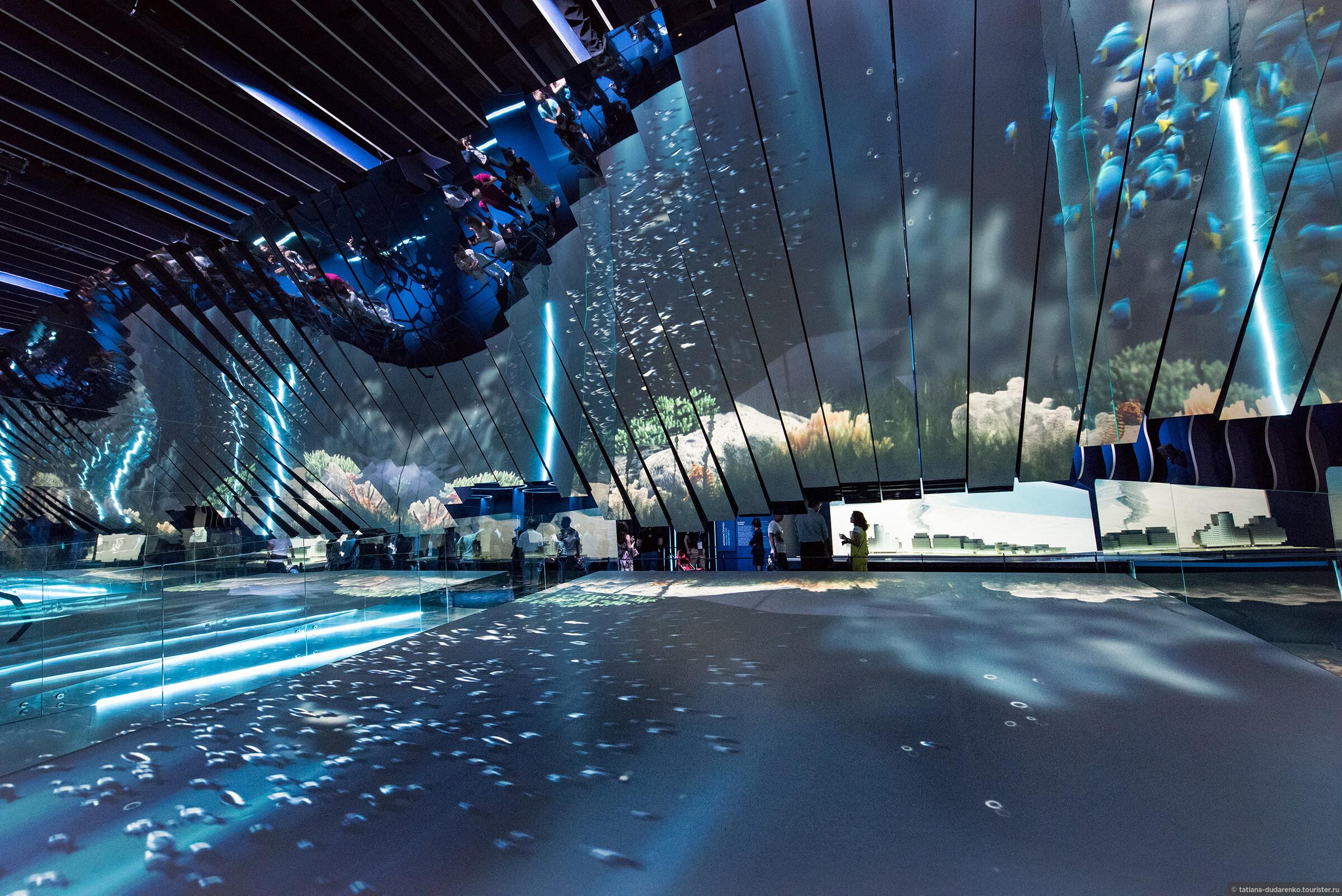 Холл энергии на Экспо 2017 в Астане