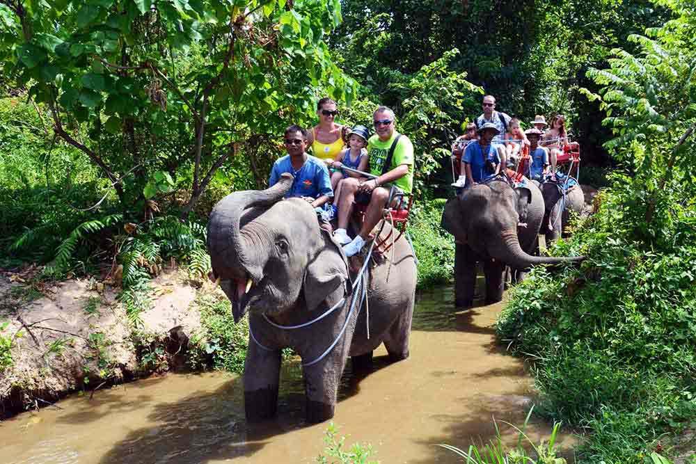 Прогулка на слоне Самуи